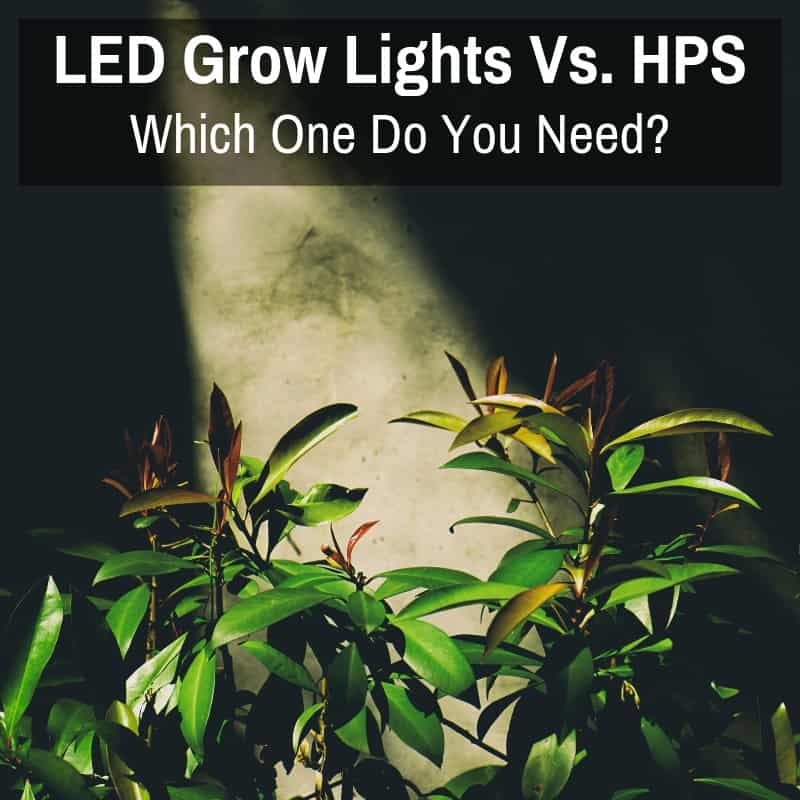 Led vs. HPS Grow Lights