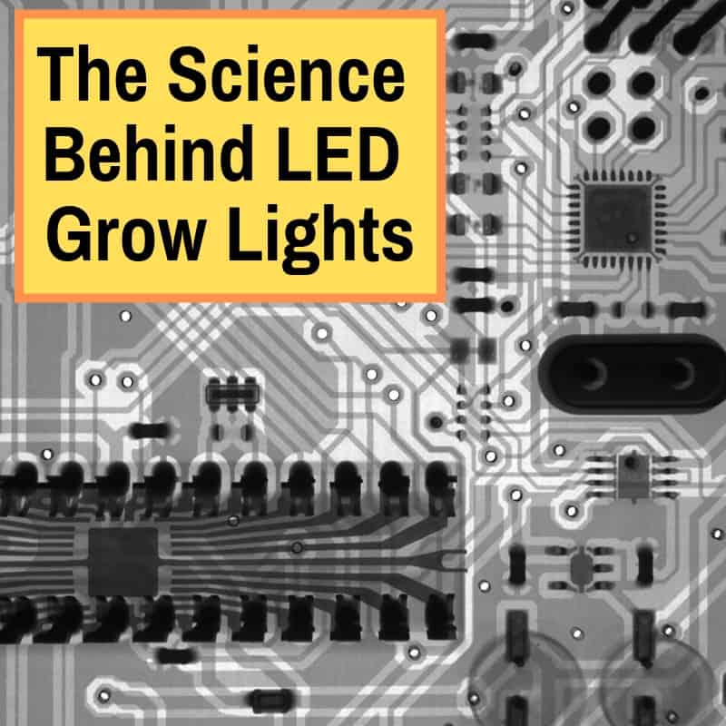 LED Grow Light Science