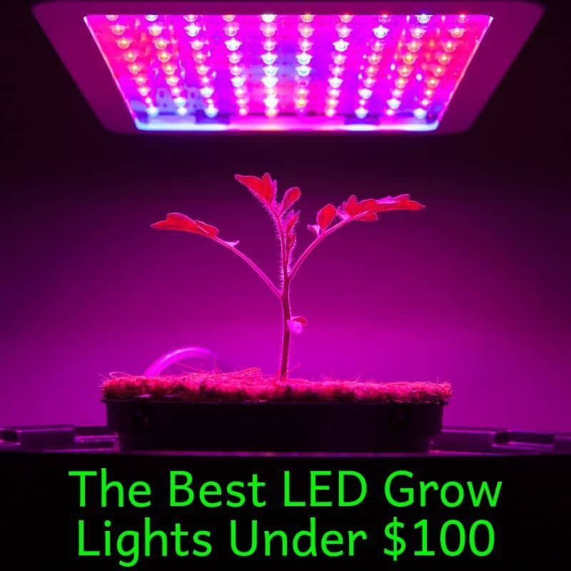 the best LED grow lights under $100