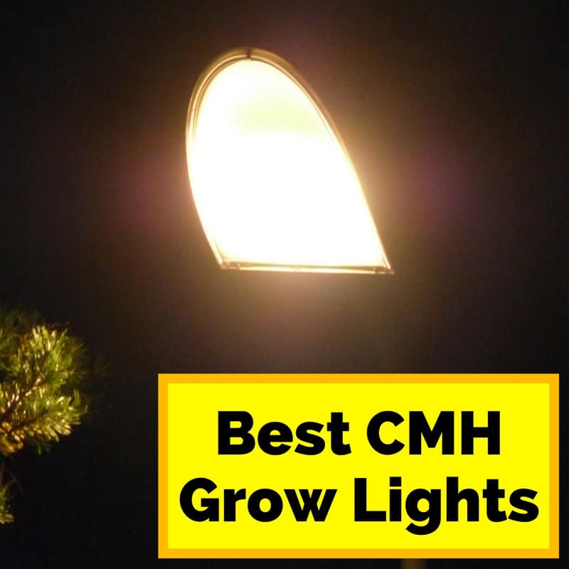best cmh grow lights