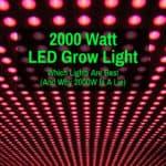 Best 2000W Horticultural LED Lights