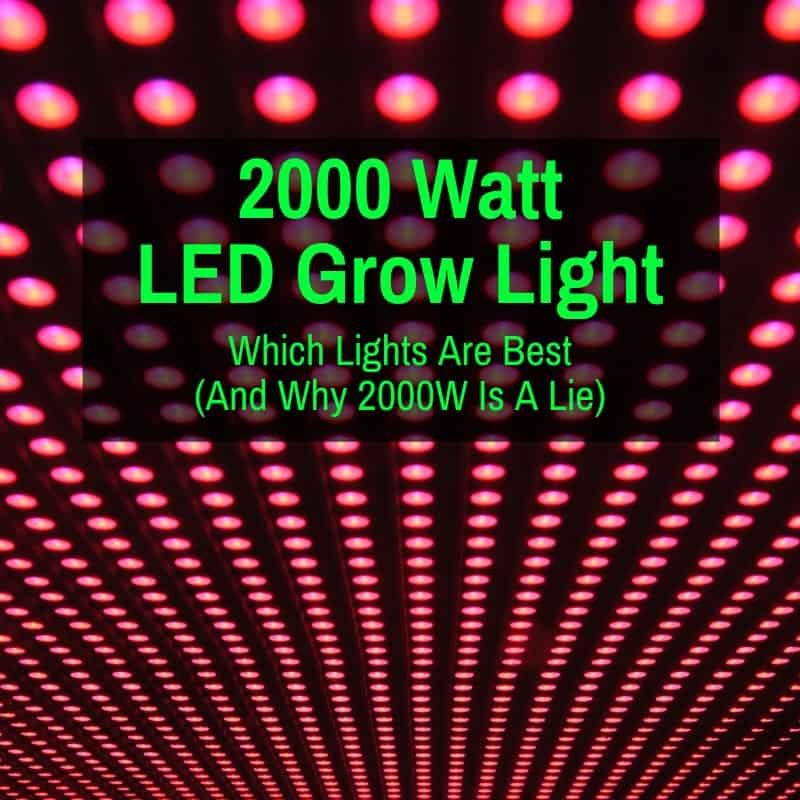 Best 2000W Horticultural LED Lights