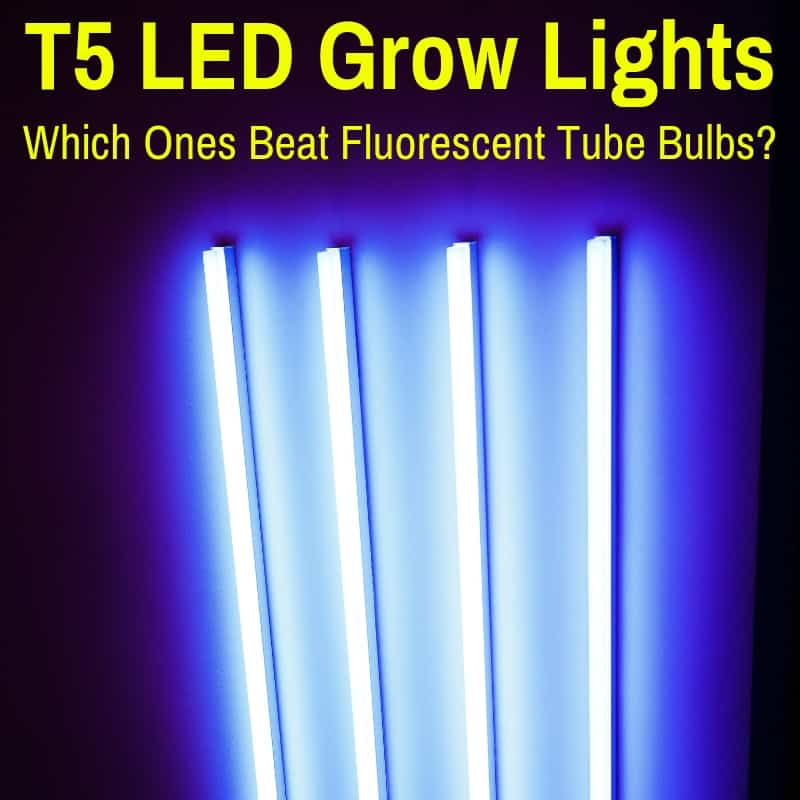 Best T5 LED Grow Lights