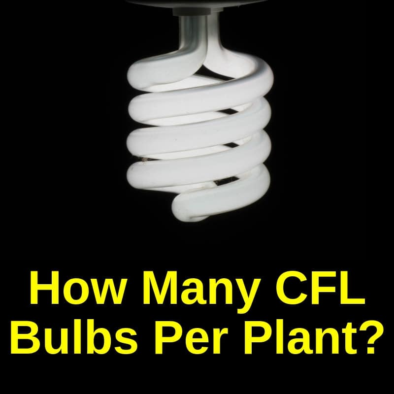 How Many Cfls Per Plant Using Watts And Size
