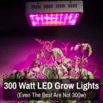 Best 300 Watt LED grow lights