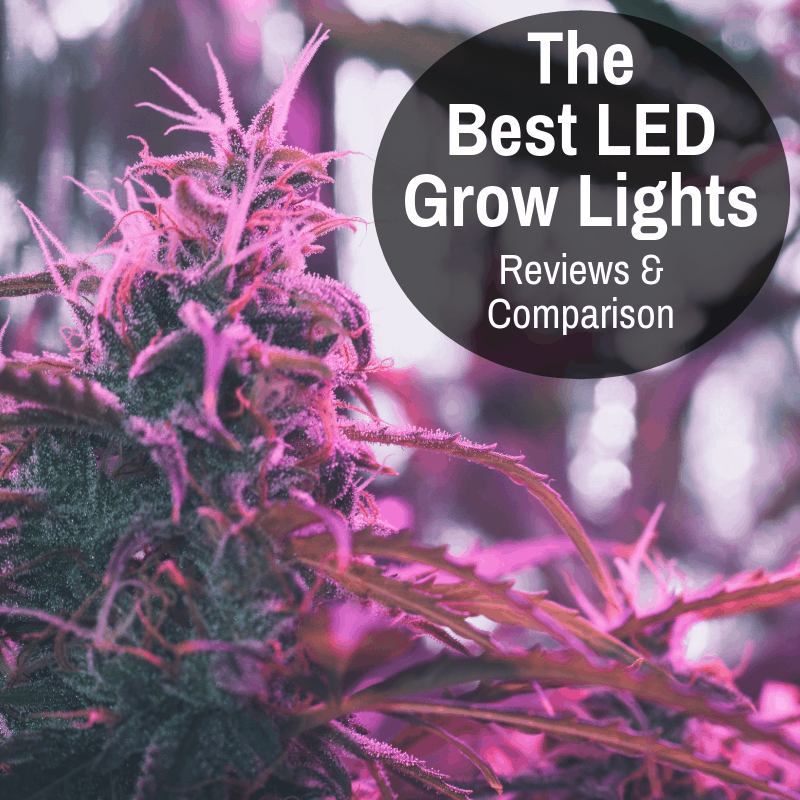 Best Led Grow Light Reviews and Comparison