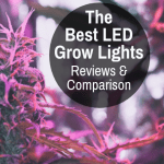 The Effect Of Uv Light On Plants Black Lights For Weed