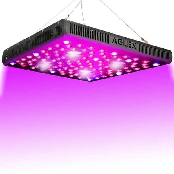 Aglex COB LED Grow Light Review (600W, 1200W & 2000W)
