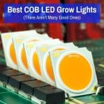 Best COB LED Lights