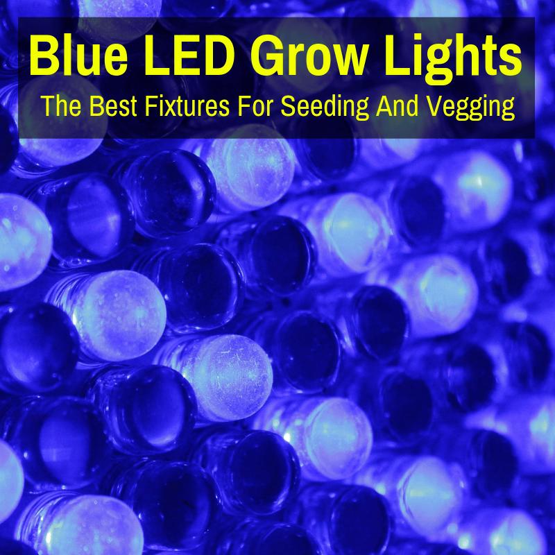 Blue Spectrum LED Grow Lights