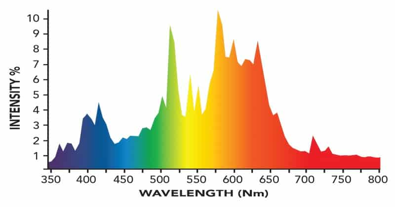 CMH Bloom Spectrum