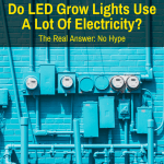 Do LED Grow Lights Use Much Power?
