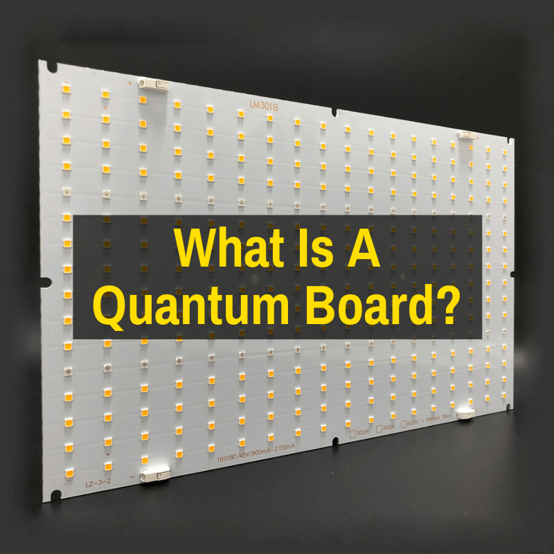 What Is A Quantum Board