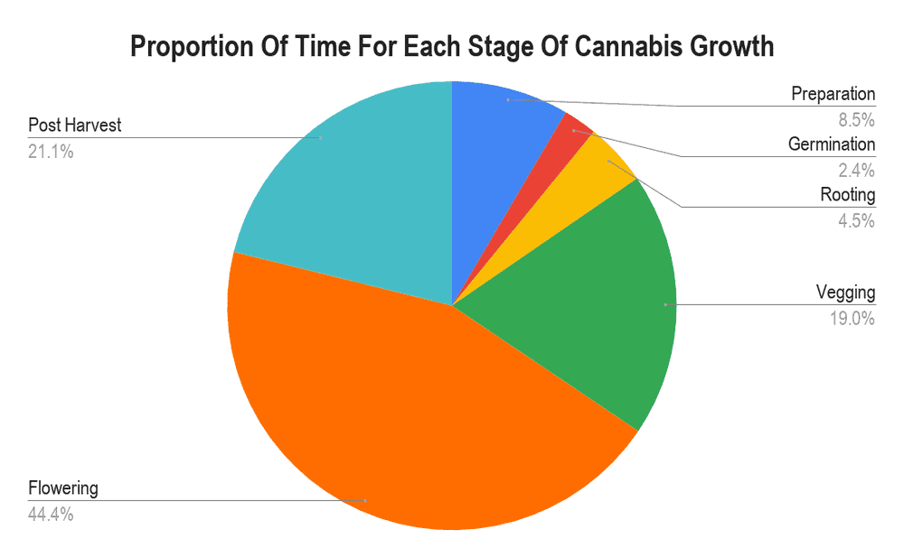Graph of cannabis grow times per stage