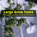 Large grow tent