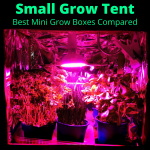 Small Grow Tent