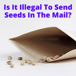 Is It Illegal To Send Seeds In The Mail