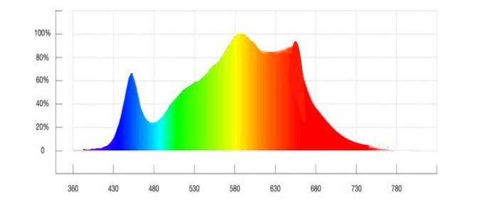 spectrum of Aceple AG-6000