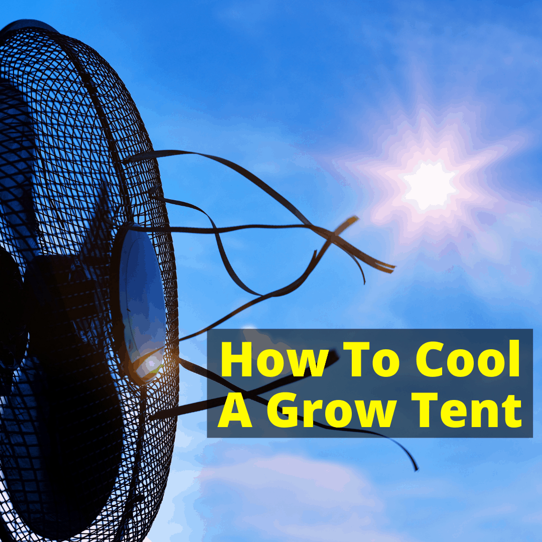 How To Cool A Grow Tent