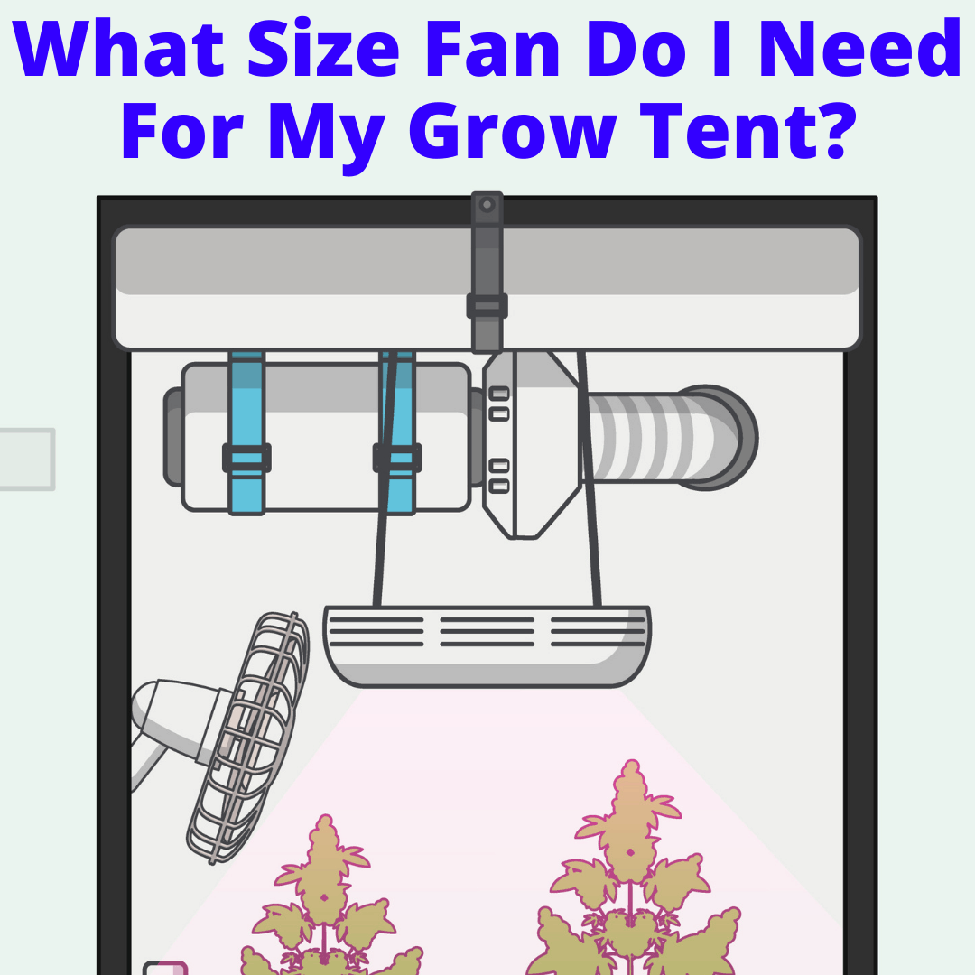 What Size Fan Do I Need For My Grow Tent