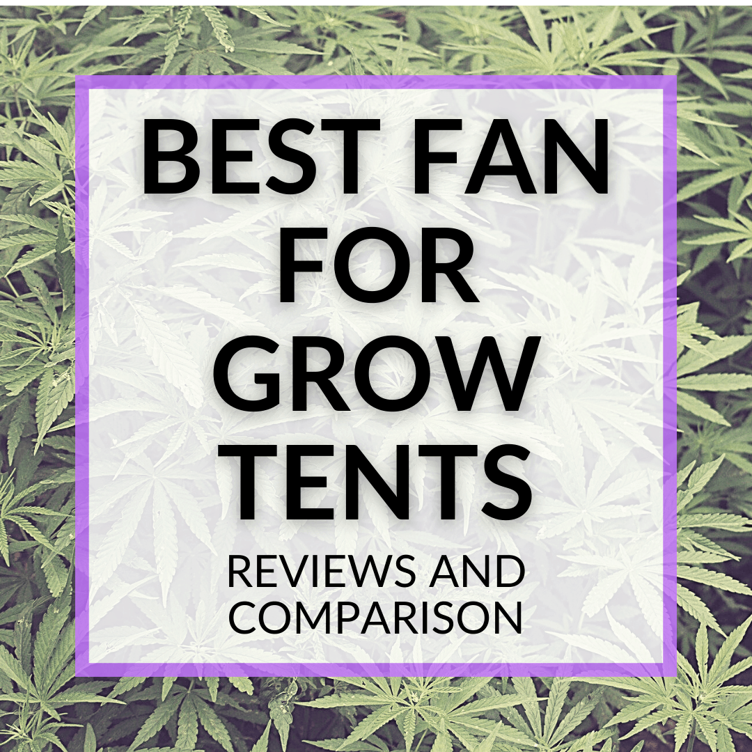 Best Fan For Grow Tents