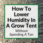 How To Lower Humidity In A Grow Tent