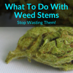What To Do With Weed Stems