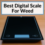 Best Digital Scale For Weed
